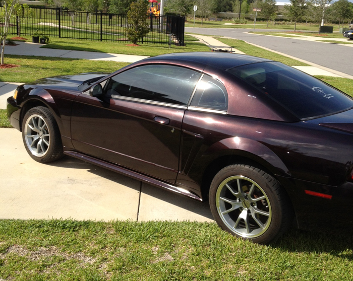 Black Cherry Pearl Mustang